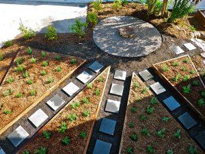 Sod Landscaping - Design