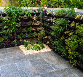 Sod Landscaping Design Brisbane - Green Walls