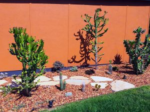 Sod Landscaping - Courtyard