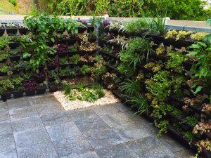 Sod Landscaping - Vertical Garden
